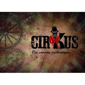 Flyers Vdlv Cirkus A6